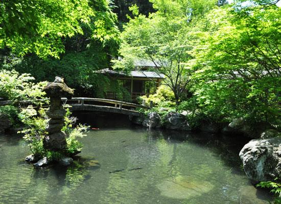 下仁田温泉・清流荘/池と離れ