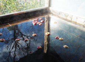 中棚温泉・中棚莊/りんご風呂