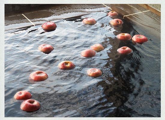 中棚荘/りんご風呂