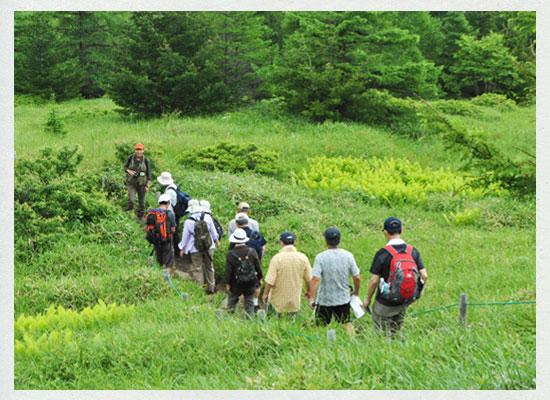 高峰温泉ハイキング