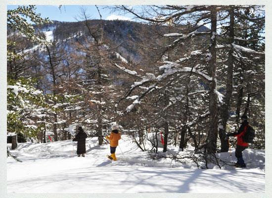 高峰温泉スノーシュー