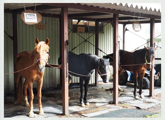 天狗温泉・浅間山荘/馬の厩舎