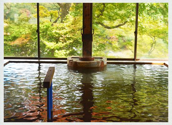 那須湯本温泉 松川屋 那須高原ホテル/女湯の内湯