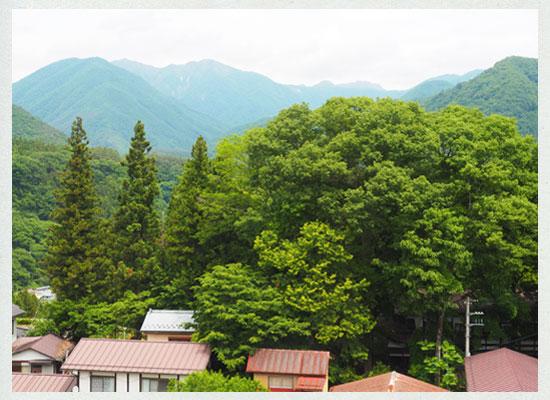豆富懐石 猿ヶ京ホテル/谷川連峰を望む山側の客室からの風景