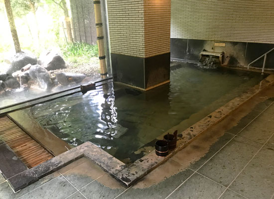 越後長野温泉・嵐渓荘/大浴場「真木の湯」(男湯)